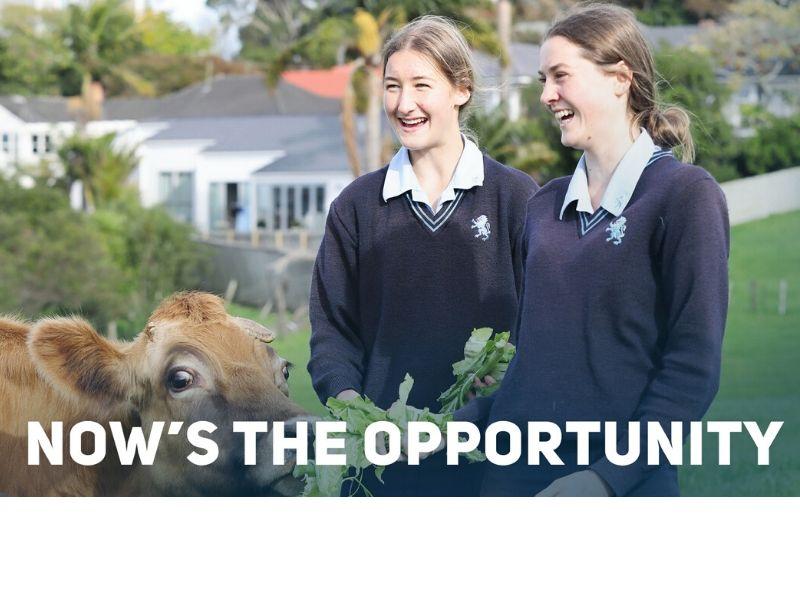 On Farm Story – Mount Albert Grammar School